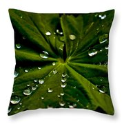 Leaf Covered With Water Droplets Throw Pillow