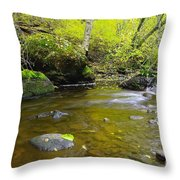 Leaf Dappled  Throw Pillow