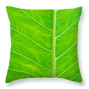 Leaf Detail Throw Pillow