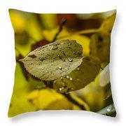 Leaf Dew Throw Pillow