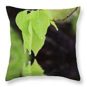 Leaf Drop Throw Pillow
