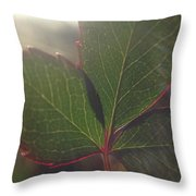 Leaf Flare Throw Pillow