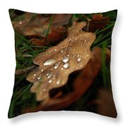 Leaf In Autumn. Throw Pillow