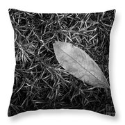 Leaf In Phlox Nature Photograph Throw Pillow
