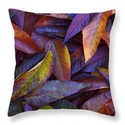 Leaf Ink Photo Designs  Throw Pillow