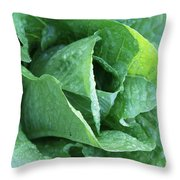 Leaf Lettuce Part 4 Throw Pillow