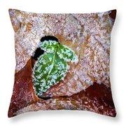 Leaf Throw Pillow