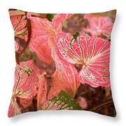 Leaf Of Color Throw Pillow