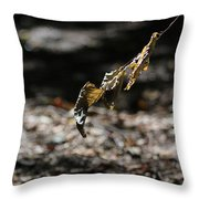 Leaf Of Fall Throw Pillow