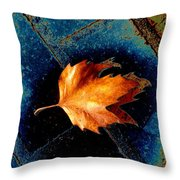 Leaf On Bricks 5 Throw Pillow