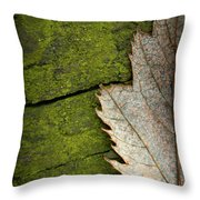 Leaf On Green Wood Throw Pillow
