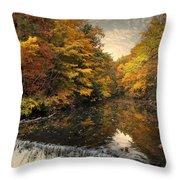 Leaf Peeping Throw Pillow