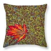 Leaf Pond Throw Pillow