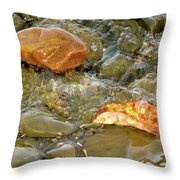 Leaf, Rock Leaf Throw Pillow