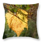 Leaf Shadows And Light Throw Pillow