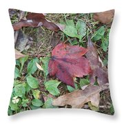 Leaf Standing Out In A Crowd Throw Pillow