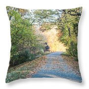 Leaf-strewn Path Throw Pillow