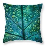 Leaf Study #4 Throw Pillow