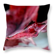 Leaf Study II Throw Pillow