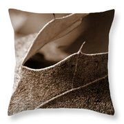 Leaf Study In Sepia II Throw Pillow