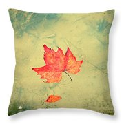 Leaf Upon The Water Throw Pillow by Bill Cannon