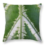 Leaf Variegated 2 Throw Pillow