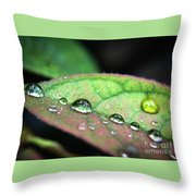 Leaf Veins And Raindrops Throw Pillow
