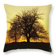 Leafless Tree Against Sunset Sky Throw Pillow