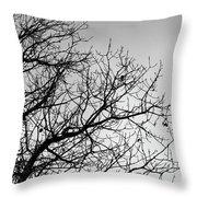 Leafless Twig Throw Pillow