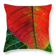 Leafs Macro Throw Pillow by Carlos Caetano