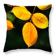 Leafs Over Water Throw Pillow by Carlos Caetano