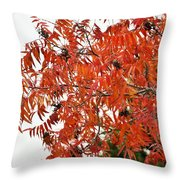 Leafs006 Throw Pillow