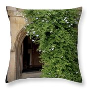 Leafy Archway  Throw Pillow