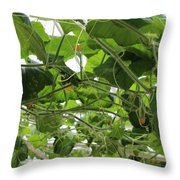 Leafy Vines Throw Pillow