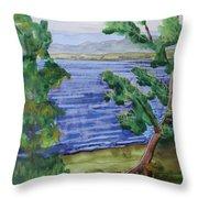 Leaning Tree By Lake Sacandaga Throw Pillow