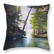 Leaning Tree Lake George Throw Pillow