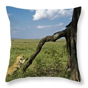 Leaping Lion Throw Pillow