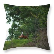 Leaping White-tail  Throw Pillow