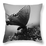 Learn To Fly 001 Throw Pillow