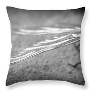 Learn To Fly Throw Pillow