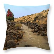 Learn To Swim, Creek Bed Quickly Filling With Water During Autumn Rainstorms In The High Desert Throw Pillow