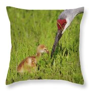 Learning To Eat Throw Pillow