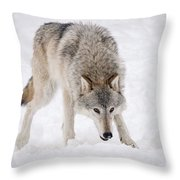 Leary Wolf Style Throw Pillow