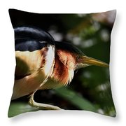 Least Bittern On The Hunt Throw Pillow