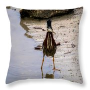 Least Bittern With A Fish Throw Pillow