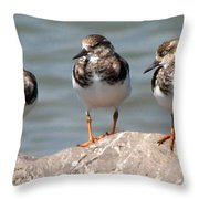 Least Sandpipers Throw Pillow