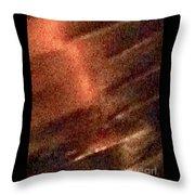 Leather 19 Throw Pillow