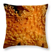 Leather Coral Throw Pillow