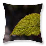 Leav Venation Throw Pillow