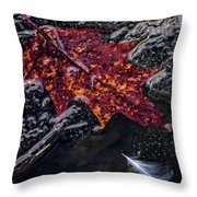 Leave Frozen In Time Throw Pillow
